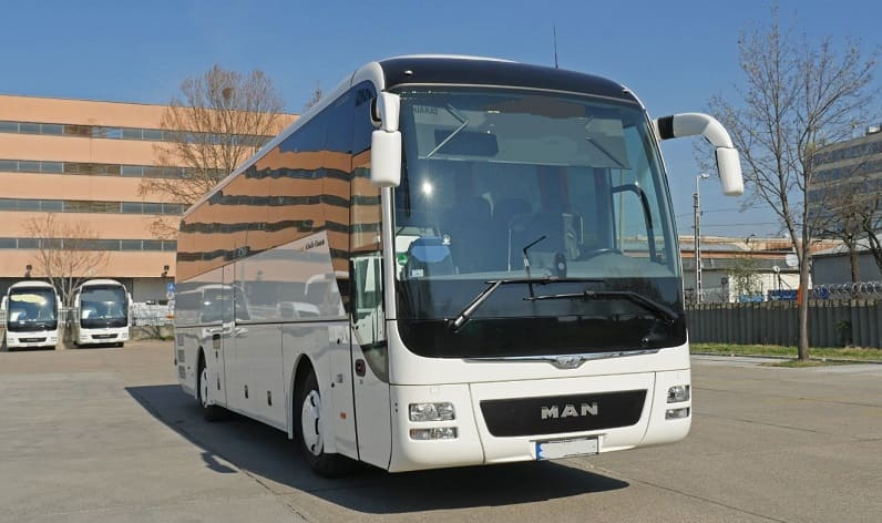 Brandenburg: Buses operator in Potsdam in Potsdam and Germany